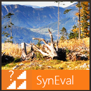 files/content/all/images/SynEval_180x180.png